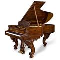 Koji si muzički instrument?