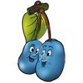 Koja si ti voćka?